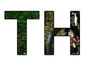 cropped-TrailHunter-logo-square.jpg