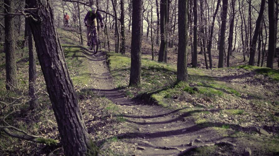 Hočimin trail: Pražská klasika na Točné