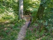 Těšte se na kličkovanou mezi stromy