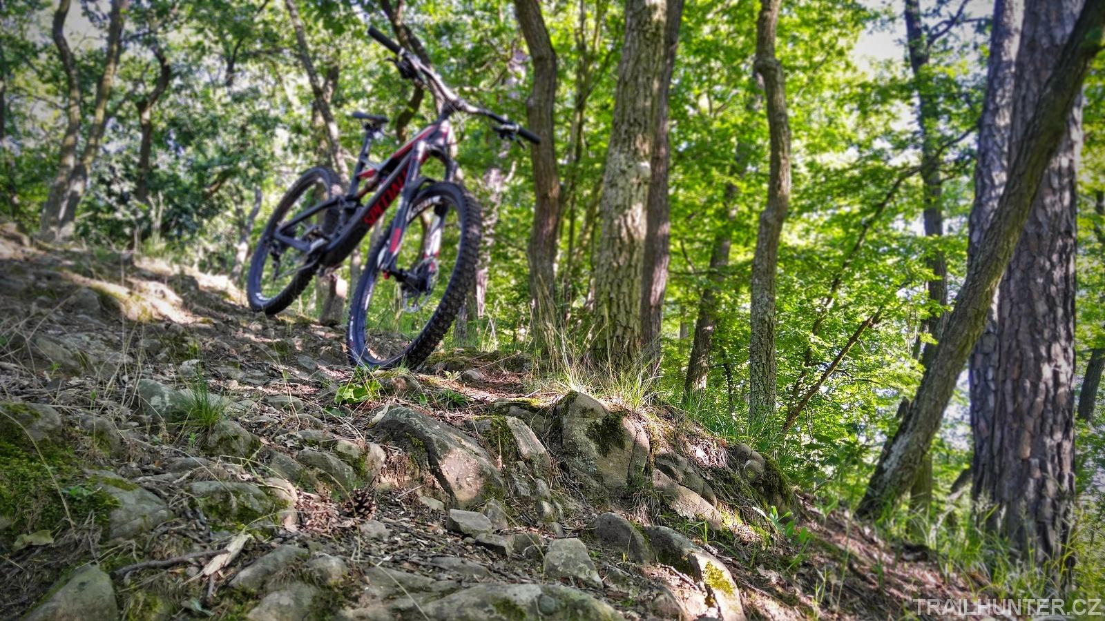 Technická část trailu obsahuje sjezd po větších kamenech v nemalém sklonu.