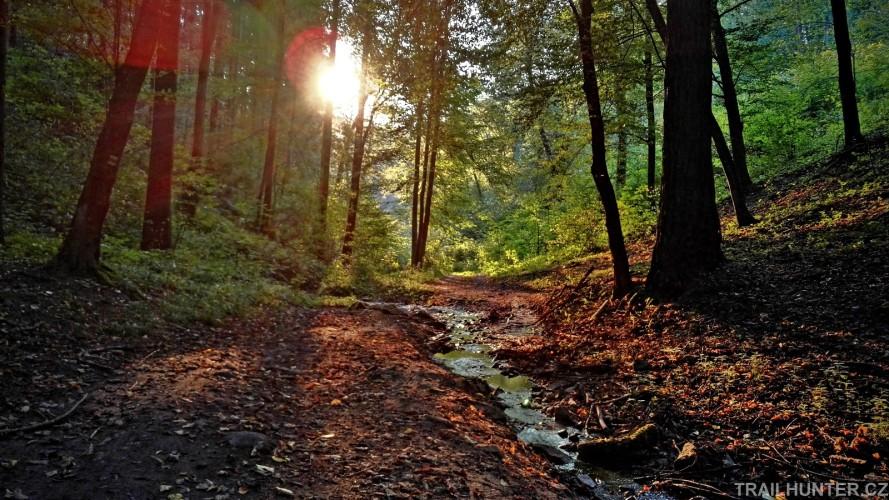 Těsnohlídkův trail: Kde koryto potoka splyne s cestou