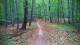 5 nejlepších trailů v okolí Brna
