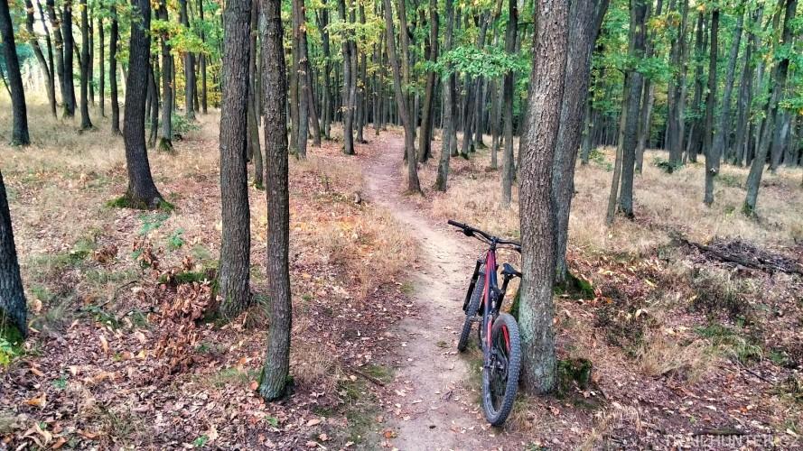 Biker vlese nevítaný: končíme spřírodními traily