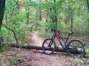 Trail kolem Staré hory