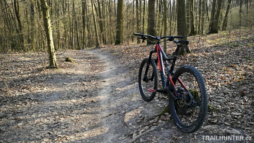 Zamilec trail