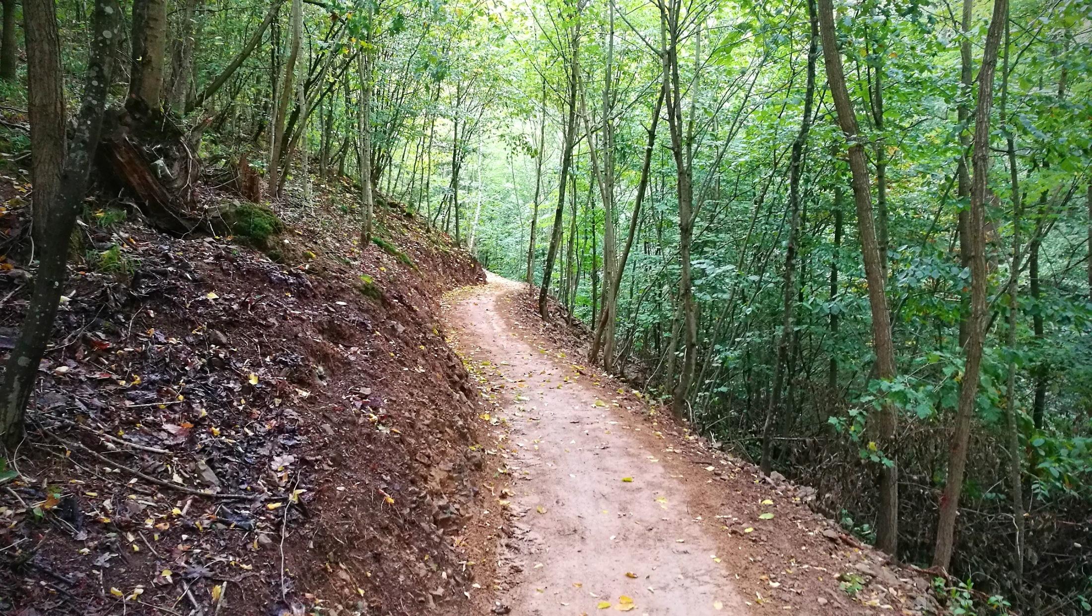 Traily v Mariánském údolí v Brně