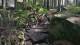 Trutnov Trails: les, skály, traily a bikerské výzvy