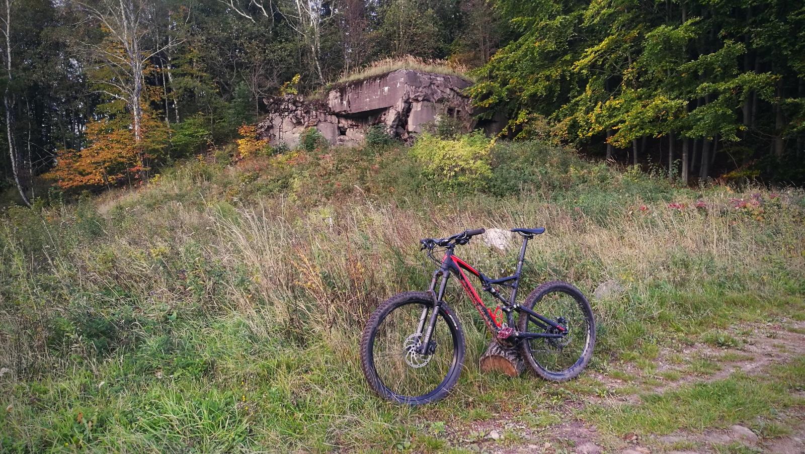Bunkr trail