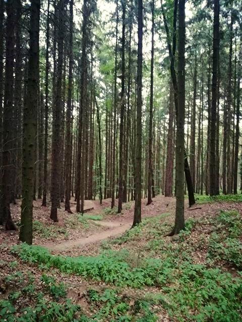 Berounka Trails