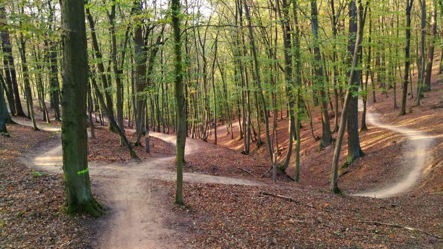 V Brně otevřeli černý trail v Mariánském údolí