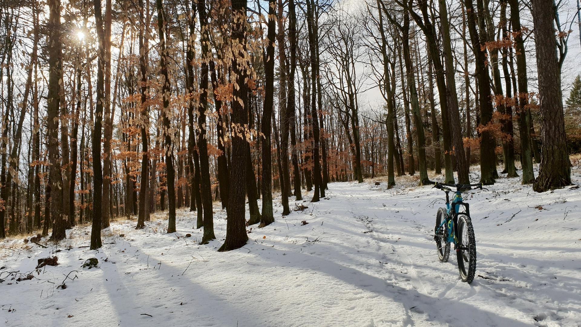 Na kole je i v zimě krásně! Zazimovat ho by byla škoda