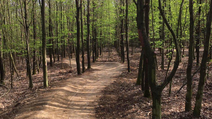 Kam na kole s dětmi: Zkuste nové singletraily na jihu Moravy
